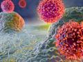 [White Paper] The Evolution of Immune Cell Killing Assays Using Live-Cell Analysis